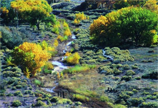 Hubbel Meander Fall[1]